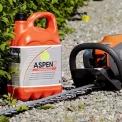 Kas yra Aspen?